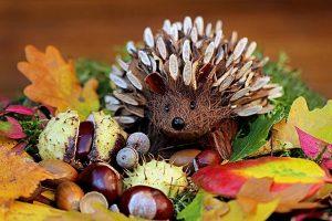 Herbstdeko Zauberwald Igel